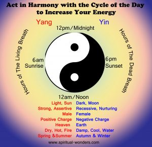 Yin and Yang during the day 2